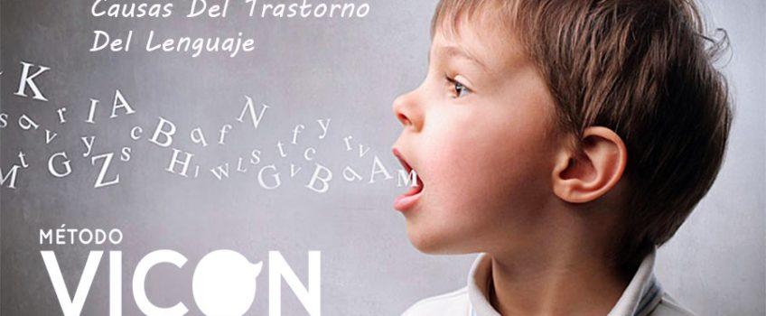 Causas del trastorno del lenguaje